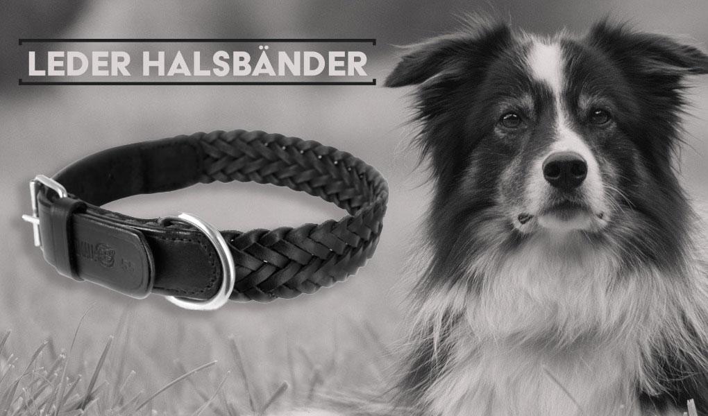 border collie halsband leder hundehalsband hund schwarz monkimau