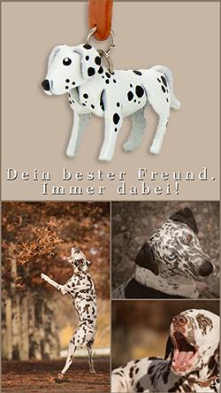 dalmatiner schluesselanhaenger leder artikel sachen geschenk anhaenger monkimau