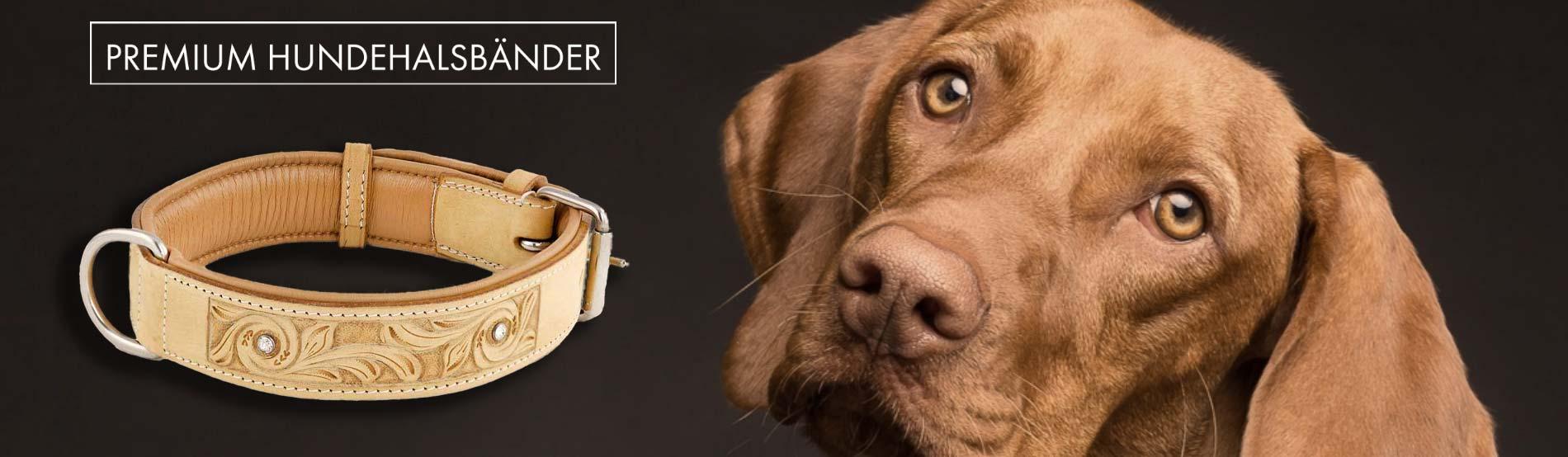 hundehalsband hunde halsband beige strass leder monkimau